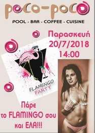 Flamingo party at Poco Poco