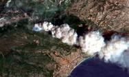 Αττική: Η εισαγγελέας του Αρείου Πάγου διέταξε έρευνα για τα αίτια της πυρκαγιάς