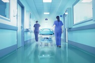 Έντεκα κρούσματα του ιού του Δυτικού Νείλου καταγράφηκαν στην Κεντρική Μακεδονία