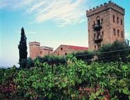 Οι τουρίστες της Πάτρας 'αποθεώνουν' την Achaia Clauss (pics)