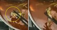 Γυναίκα πελάτης βρήκε νεκρό αρουραίο στη σούπα της σε κινεζικό εστιατόριο (video)