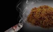 Πάτρα: Κατασχέθηκαν πάνω από 450 πακέτα λαθραίων τσιγάρων