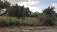 Πάτρα: Κρίσιμη σύσκεψη για τα θέματα της Νεάπολης, παρουσία Πελετίδη