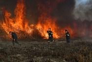 Φωτιά ξέσπασε στο Μοίρα Αχαΐας