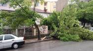Αγριεμένος έφτασε ο 'Ξενοφών' στην Πάτρα, με ισχυρούς άνεμους και πτώσεις δέντρων