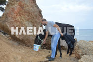 Ηλεία - Φιλόζωοι έκαναν 'εκστρατεία' και έσωσαν την Χάιδω από την θάλασσα (pics)