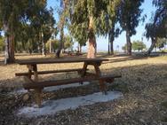 Πάτρα: Έρχεται δωρεάν πρόσβαση στο διαδίκτυο στο Νότιο Πάρκο