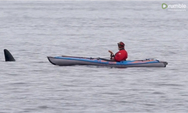 Κάνει καγιάκ και ακριβώς δίπλα του περνάει μία Όρκα φάλαινα (video)