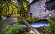 Πλανητέρο Αχαΐας - Ένα γαλήνιο χωριό που ξεχωρίζει για το μαγευτικό του πλατανόδασος (video)