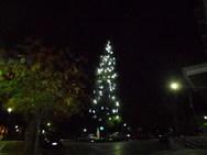 Το δέντρο στα Ψηλαλώνια της Πάτρας φωτίστηκε και φέτος - Με την πλατεία τι γίνεται;