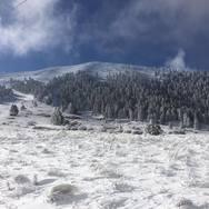 Ένα πανέμορφο χιονισμένο τοπίο, το Χιονοδρομικό Κέντρο Καλαβρύτων! (φωτο)