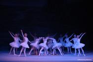 'Λίμνη των Κύκνων' - Στην Πάτρα, η διάσημη και διαχρονική ιστορία αγάπης!