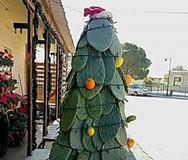Ένα πρωτότυπο Χριστουγεννιάτικο δέντρο στη Μάνη