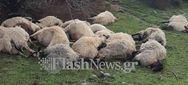 Κεραυνός σκότωσε 20 πρόβατα στα Χανιά