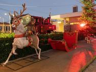 Αχαΐα: Eορταστική ατμόσφαιρα στο φωτισμό του Χριστουγεννιάτικου δέντρου στο Διακοπτό (φωτο)