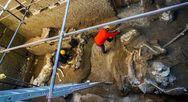 Πομπηία: Η αρχαιολογική σκαπάνη έφερε στο φως ένα απολιθωμένο άλογο