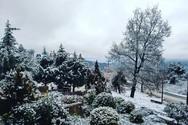 Τρίκαλα Κορινθίας - Το μαγικό χωριό που περιμένει το 2019 στα 'λευκά'