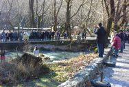 Πλανητέρο Καλαβρύτων - Αγιασμός στις πηγές του Αροάνιου ποταμού