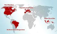 Η Ελλάδα μέσα στις υποψήφιες χώρες να ξεσπάσει θανατηφόρα επιδημία