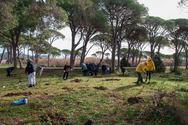 Αχαΐα: Δεντροφύτευση στο μαγικό φυσικό τοπίο της Στροφυλιάς (pics)