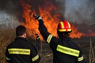 Φωτιά σε δύο μέτωπα στον Ερύμανθο - Ισχυροί άνεμοι στην περιοχή