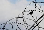 Απέδρασαν 78 κρατούμενοι από φυλακή της Αϊτής