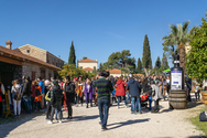 Πάτρα: Πλήθος κόσμου στην Kαρναβαλική Achaia Clauss! (φωτο)