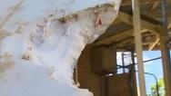 Σέρφερ δέχθηκε επίθεση από λευκό καρχαρία (video)