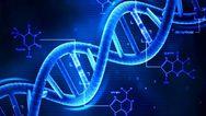 Για πρώτη φορά δημιουργήθηκε DNA με 8 «γράμματα» του γενετικού αλφαβήτου
