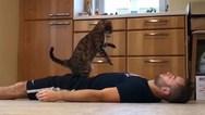 Γάτα προσφέρει τις... πρώτες βοήθειες (video)