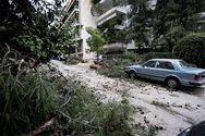 Νεά Σμύρνη: Δένδρο καταπλάκωσε 12 αυτοκίνητα (pics)