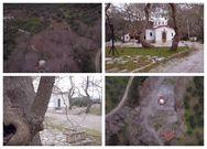 Αγ. Αναστάσιος - Ένα γραφικό εκκλησάκι μόλις λίγα χλμ έξω από την Πάτρα (video)
