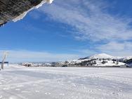 Φρέσκο χιόνι στο Χιονοδρομικό Κέντρο Καλαβρύτων - Οι πίστες που θα είναι ανοικτές (pics)