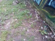 Πάτρα: Μαθητές έρχονται αντιμέτωποι στα σχολεία τους με σύριγγες και τοξικομανείς