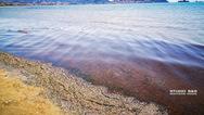 'Κοκκίνισε' η θάλασσα στο Ναύπλιο (φωτο)