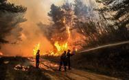 Τρίτη μέρα καίει η φωτιά στο δάσος της Στροφυλιάς - Μεγάλη η καταστροφή (pics)
