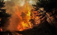 H παράταξη ''Ωρα Πατρών' με αφορμή την πυρκαγιά στην Στροφυλιά
