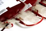 Πάτρα: Έκκληση για αίμα για την 15χρονη Καλλιρρόη που τραυματίστηκε στην Παραβόλα