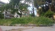 Η πλατεία της Πάτρας που θυμίζει λιβάδι (και δεν είναι η μόνη)!