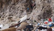ΟΗΕ: Συμφωνία 180 χωρών για τη μείωση των πλαστικών