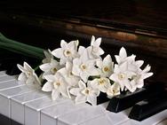 Πάτρα: H Φιλαρμονική Εταιρία διοργανώνει ρεσιτάλ πιάνου