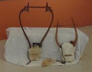 Πάτρα - Οι μικροί φίλοι του Μουσείου καλούνται να ανακαλύψουν τα μουσικά όργανα στα εκθέματά του!