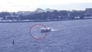 Νεαρός σέρφερ βρήκε τραγικό θάνατο, όταν παρασύρθηκε από 'ιπτάμενο δελφίνι' (video)