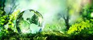 OIKIΠΑ: '5 Ιουνίου: Ποια ημέρα για το Περιβάλλον;'