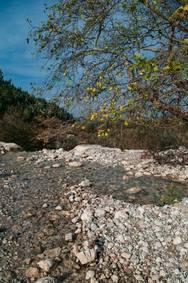 Οικολογική Δυτικής Ελλάδας: Το υγιές περιβάλλον, όρος για την επιβίωσή μας!