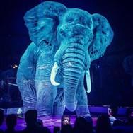 Ένα τσίρκο με... ολογράμματα ζώων (video)