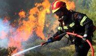 Σύλληψη ενός ατόμου για τη φωτιά στα Τσαμέικα Δυτικής Αχαΐας