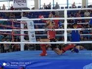 '4 στα 4' για τον Σπάρτακο Πατρών στο πανελλήνιο κύπελλο Muay Thai