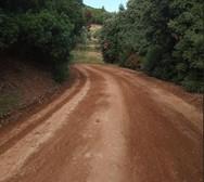Καθαρίστηκε ο αγροτικός δρόμος στην Άνω Ροδινή