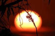 Γι' αυτό την αγαπάμε - Ακαταμάχητο το ηλιοβασίλεμα στην Πάτρα! (φωτο)